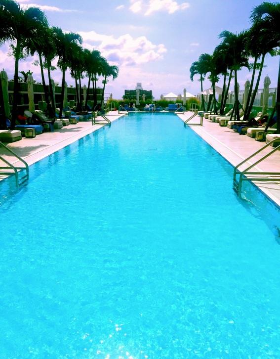 1 Hotel Rooftop Pool