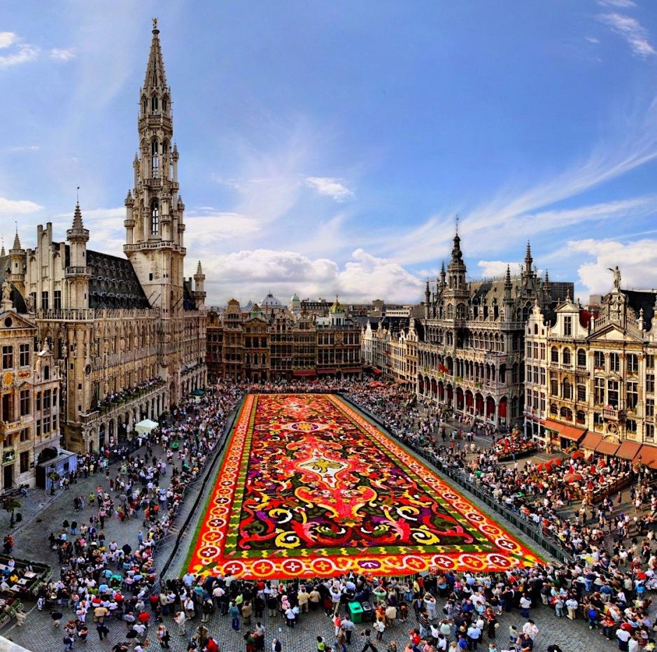 Flower Carpet, Mathieu Paternoster